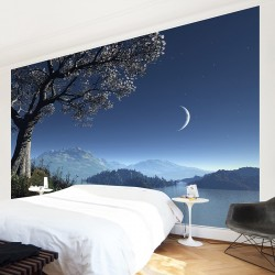 Adesivo per pareti [14.00€/m²]